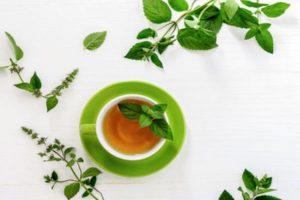 Bloomington and Terre Haute tea services